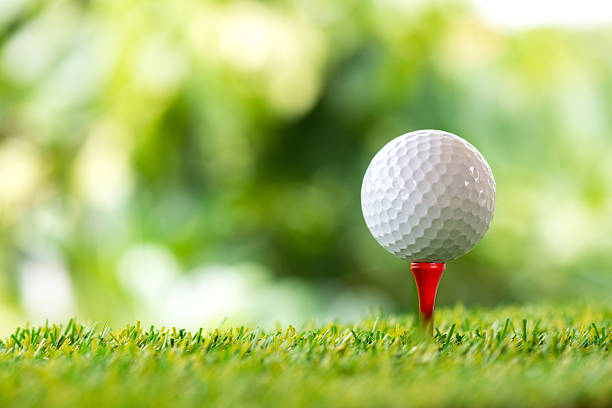 45th Annual Golf Classic & Dinner